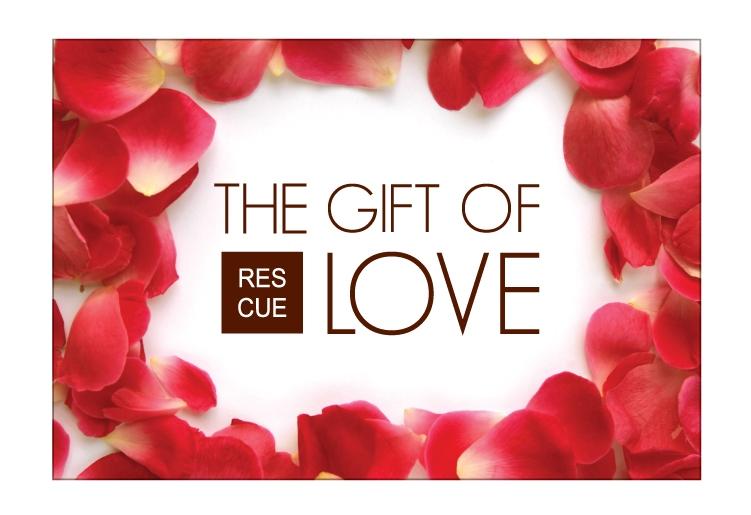 valentine's day specials | beauty aficionado, Ideas