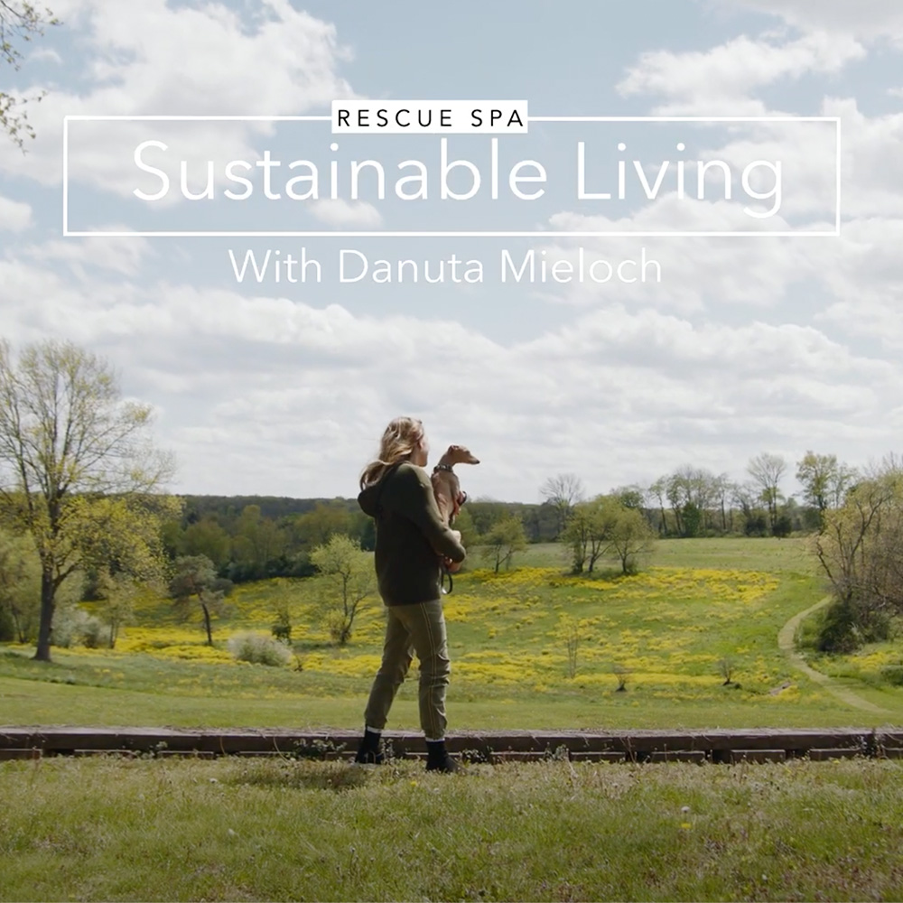 SUSTAINABLE LIVING // WITH DANUTA MIELOCH